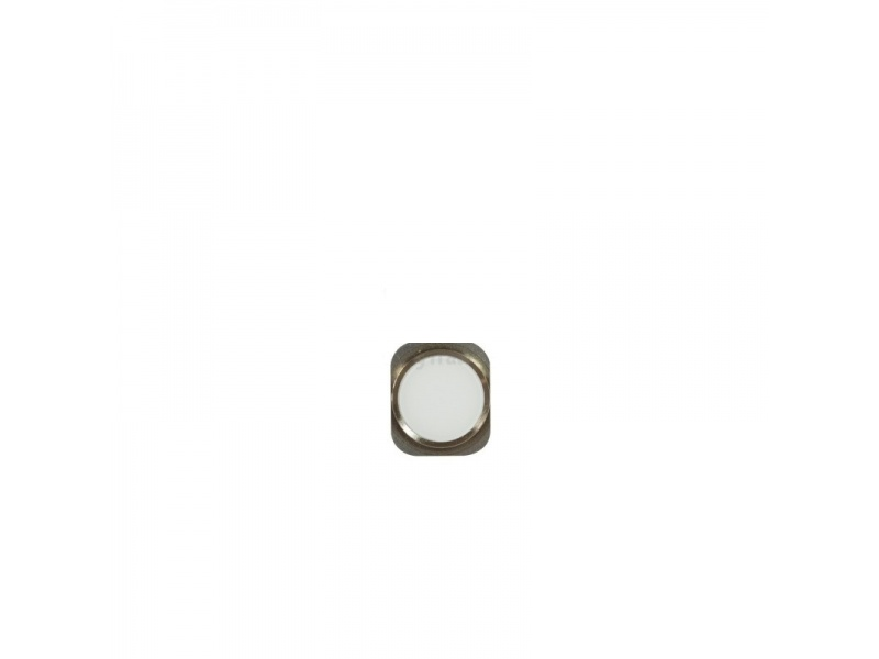Home Button Silver pro Apple iPhone 6 Plus